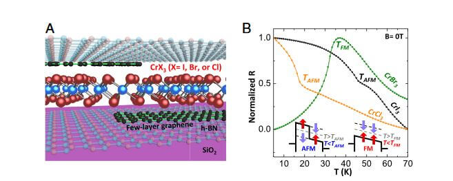 Two-Dimensional Quantum Materials and Heterostructures