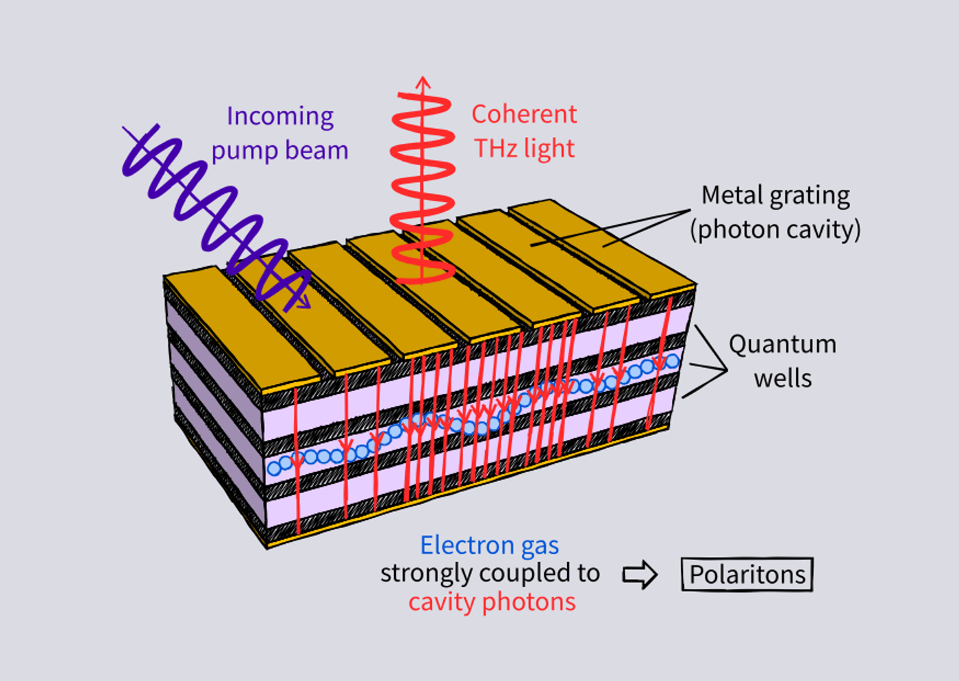 Development of Terahertz Polariton Lasers