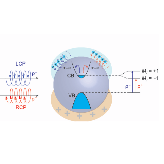 Plasmon Control of Quantum States in Semiconductor Nanocrystals