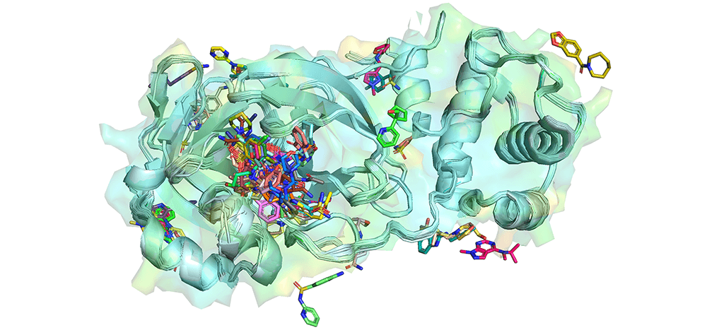 Waterloo researchers study coronavirus structure to help design drugs for current and future pandemics